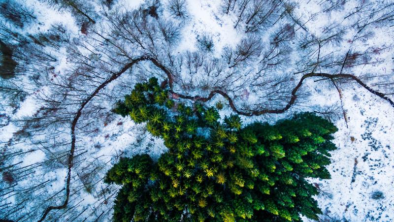 Фото: dronestagr.am   Mbernholdt