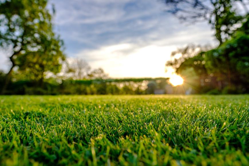 Трава  Бег по траве существенно снижает нагрузку на ступни. Идеальное покрытие для спортсменов, которые восстанавливаются после травмы. Вот только городским жителям найти идеально ровное травяное покрытие, как бывает на футбольном поле, достаточно сложно. А бег по «дикой» траве чревато травмами от незаметных ям и кочек.