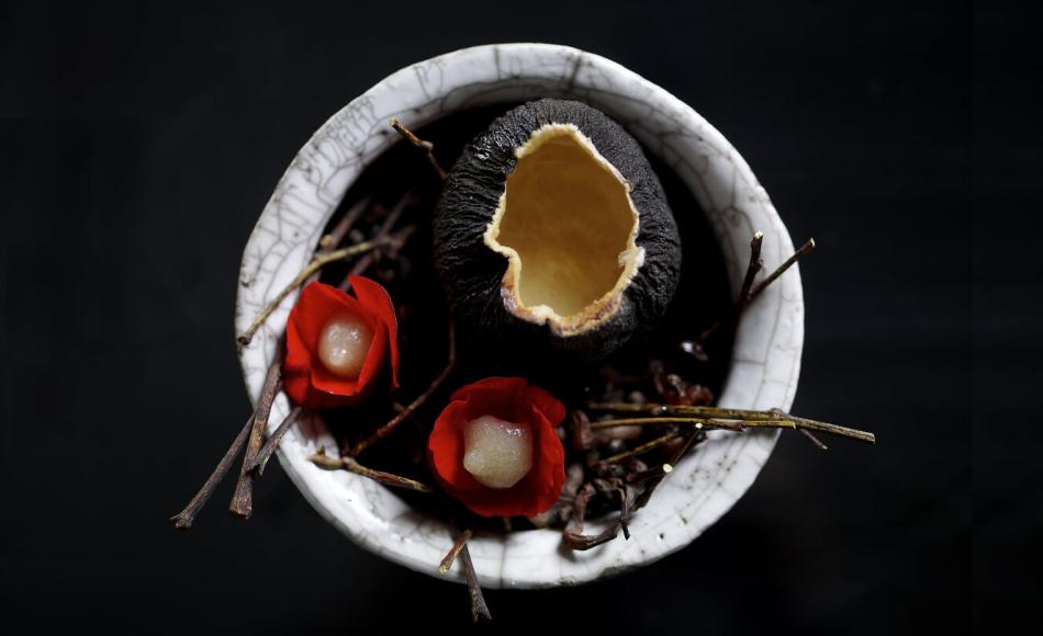 White Rabbit  1) «Аленький цветочек»: цветы бегонии, яблоко и черная редька (на фото); 2) Ряженка из лебяжьих печенок и пастила из антоновки; 2) Печёный белый лук, уни, пахта и белый шоколад; 4) Треска и чёрный хлеб; 5) Виноград «Изабелла»