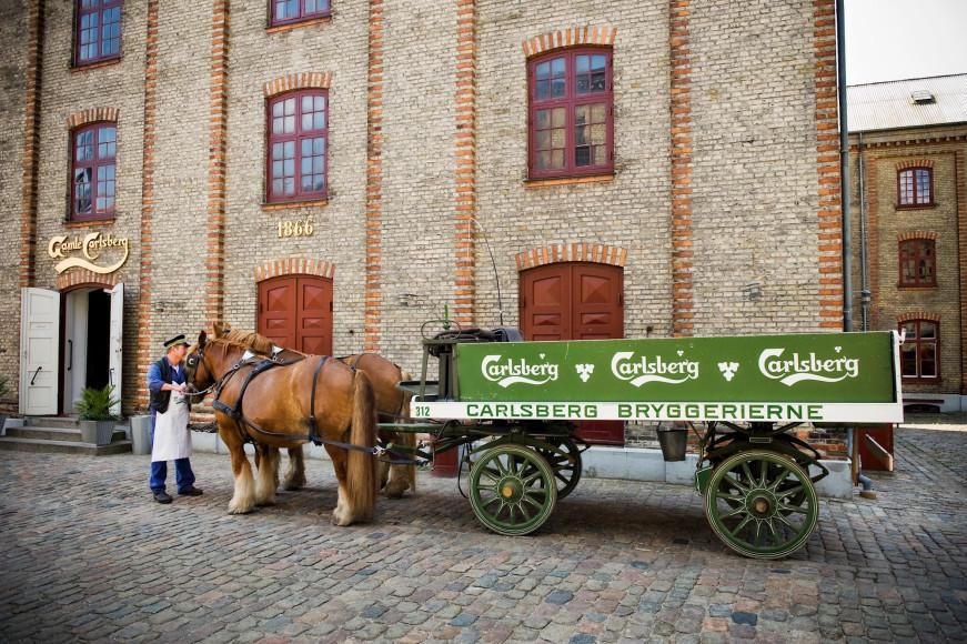 Во время экскурсии на историческую пивоварню Carlsberg можно не только выпить пива, но и покататься на запряженной лошадьми повозке