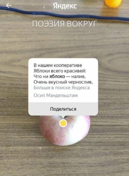 Фото: Яндекс