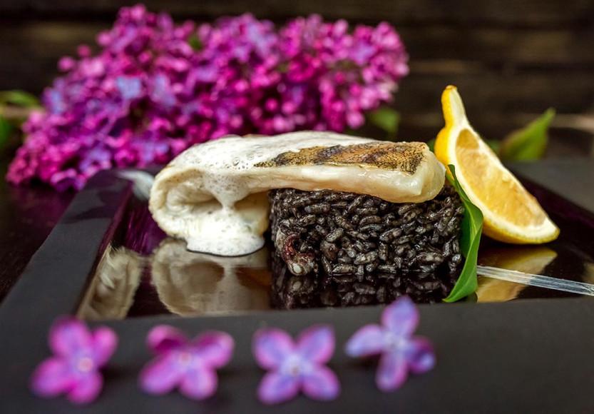 Балтийский судак, черное risotto с каракатицами, лимонным cappuccino и шафрановым соусом