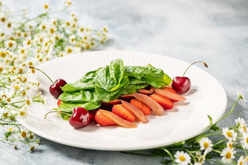Черешня, клубника, ревень, томаты, базилик
